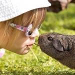 Child Friendly Pets